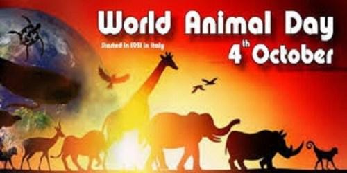 4th October: World Animal Day 2019