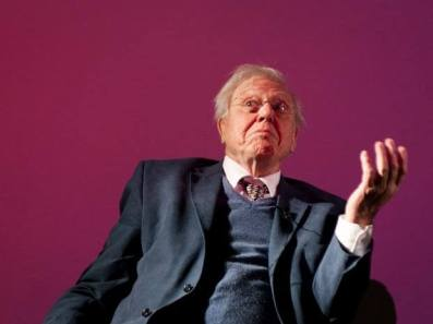 British naturalist David Attenborough to get 2019 Indira Gandhi Peace Prize