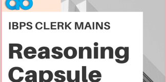 Reasoning Capsule blog