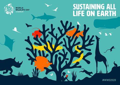 3rd March: World Wildlife Day