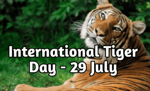 29th July: International Tiger Day 2020