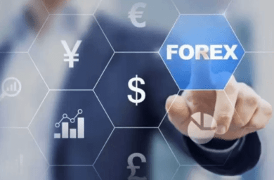 India's forex reserves surge by $3.62 bn to fresh all-time high