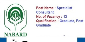 NABARD for Specialist Consultant Result 2020 : 13 Post check here
