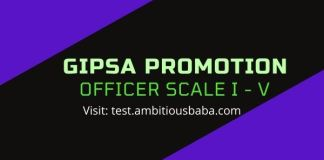GIPSA Officer scale
