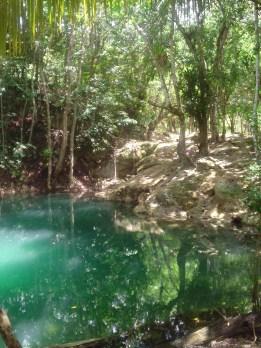 Monkey Falls - Cayo