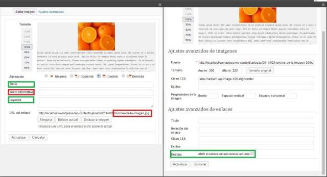 optimizacion SEO de imágenes en wordpress
