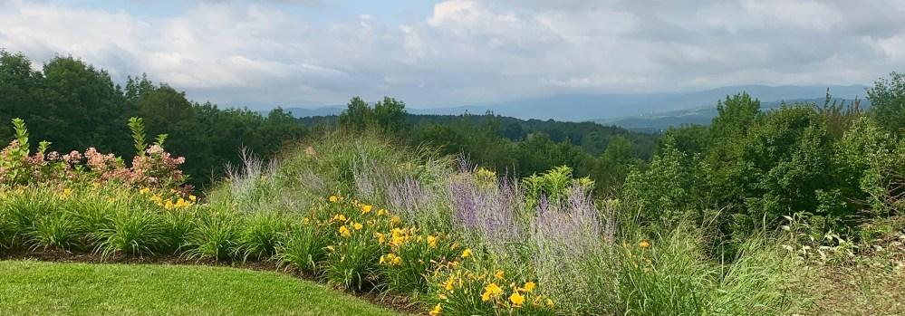 Landscape Planting by Ambler Design