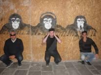 Monkey business #2 - in Venice