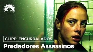 Predadores Assassinos - Jacarés criam emboscada em novo clipe | Filmes | Revista Ambrosia