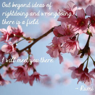 Rumi inspirational quote_doi_suthep_coffee_break_cherry blossoms