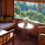 bali-yoga-retreat-ecolodge-view