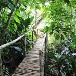 hiking-yoga-retreat-nicaragua