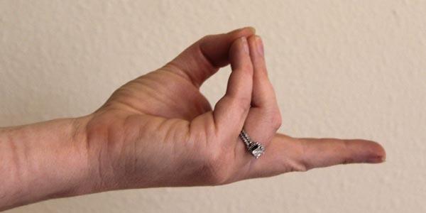 pran-hand-mudra
