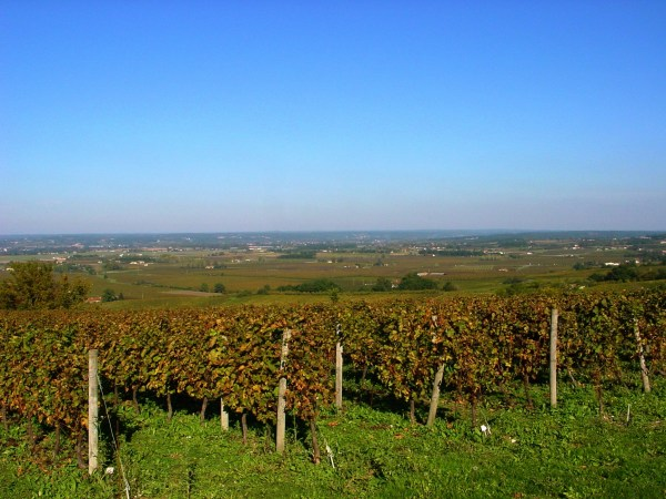 monbazillac-wine-yoga-retreat-southwest-france