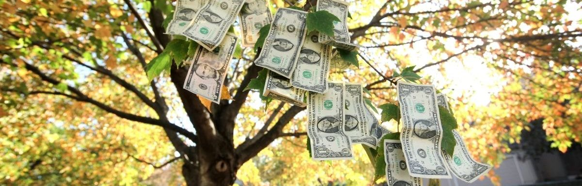 Financial Happiness: How Much Money Is Enough?
