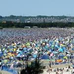 潮干狩り情報横浜2017!海の公園の情報とGWの混雑状況やおすすめ時期は?