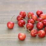 さくらんぼには知られざる嬉しい効能がたくさん。さくらんぼの由来からその種類。栄養・効果をご紹介