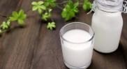 牛乳の栄養成分はバランスの取れた優秀な飲み物!飲むタイミングを知ってその吸収を高めましょう。
