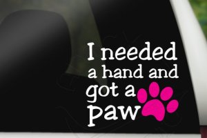 I needed A Paw