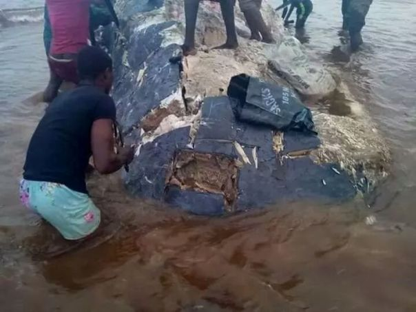 Residents Of Ikuru Town In Rivers State Cut Up Dead Whale For Their Consumption (3)
