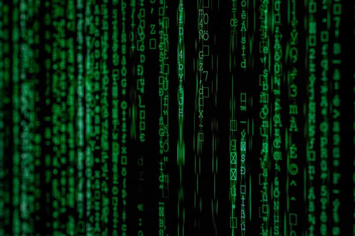 close up photo of matrix background