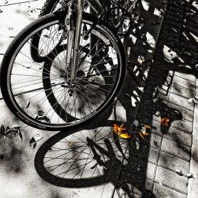 streetshadows2