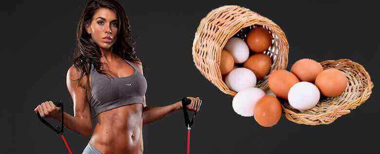 Huevo: alimento protéico