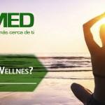 Podcast 333 AMED – ¿Qué Es El Wellnes?