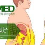 Podcast 285 AMED – Cómo Reducir La Grasa Corporal Recomendaciones Proteicas Para La Pérdida De Grasa