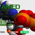Podcast 382 AMED – 3 Tipos de Metabolismo en el ejercicio. Ing. Agustín Alarcón Arce