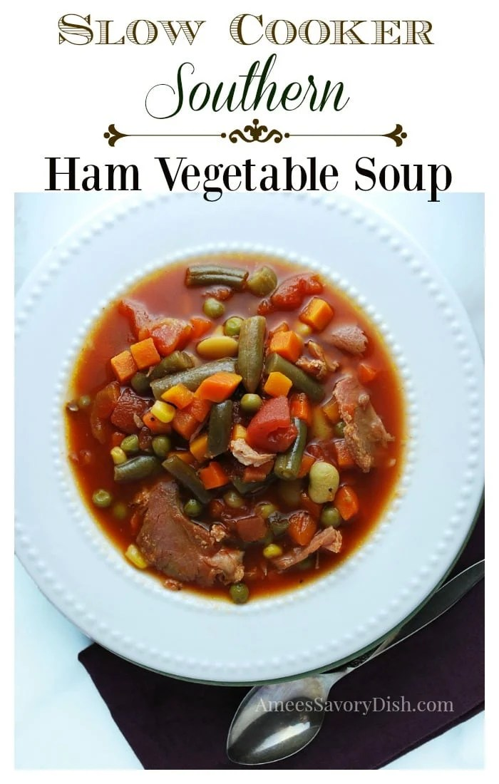 Southern Cooker Southern Ham Vegetable Soup