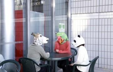 話し合う3頭