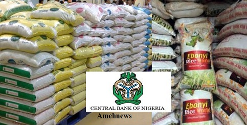 CBN plans to make Nigeria rice global accepts