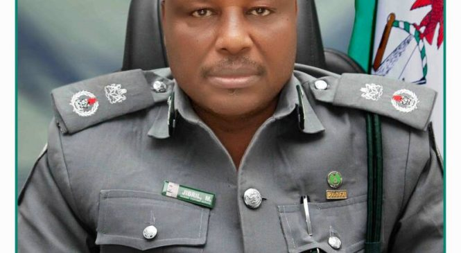 APAPA CUSTOMS NET N81.784b, RECORDS EXPORTS PROCEEDS OF $115.093 m IN Q1, 2018