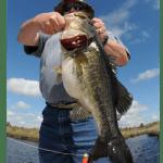 Bass Fishing with Amelia Angler