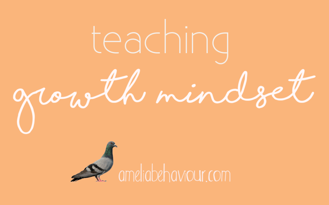 Don't give up! Teaching growth mindset