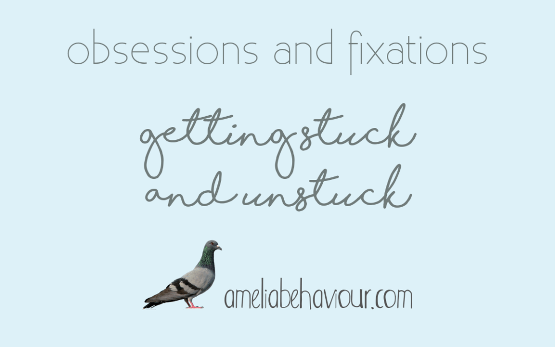 Obsessions and fixations: getting stuck and unstuck