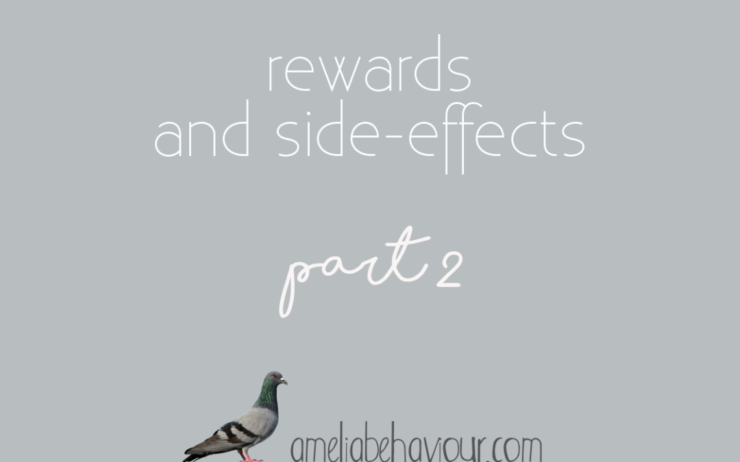 Rewards and side-effects- part 2