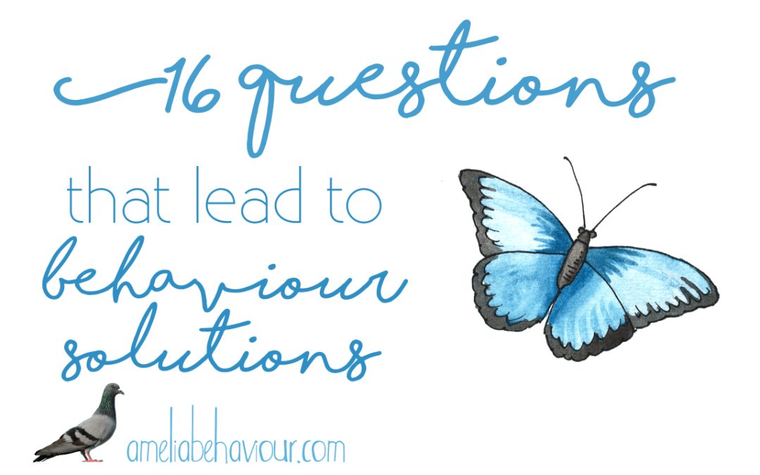 16 Essential Questions To Ask With Your Behaviour Therapist