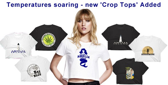 Newsletter Crop Top