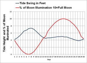 Tides and Weather's impact on fishing solved 1
