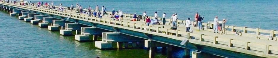 fishing-bridge-southend (2)