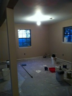 Painted the living room