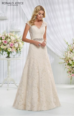 Erica - LACE OVER ORGANZA, CAPPED SLEEVES OPEN BACK DETAIL AND SATIN WAISTBAND