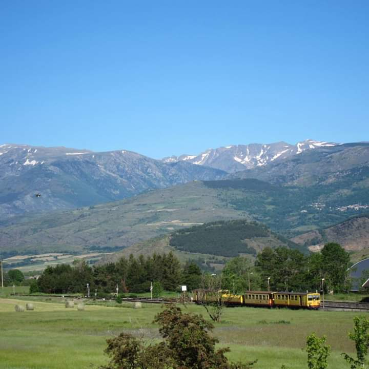 excursion train jaune
