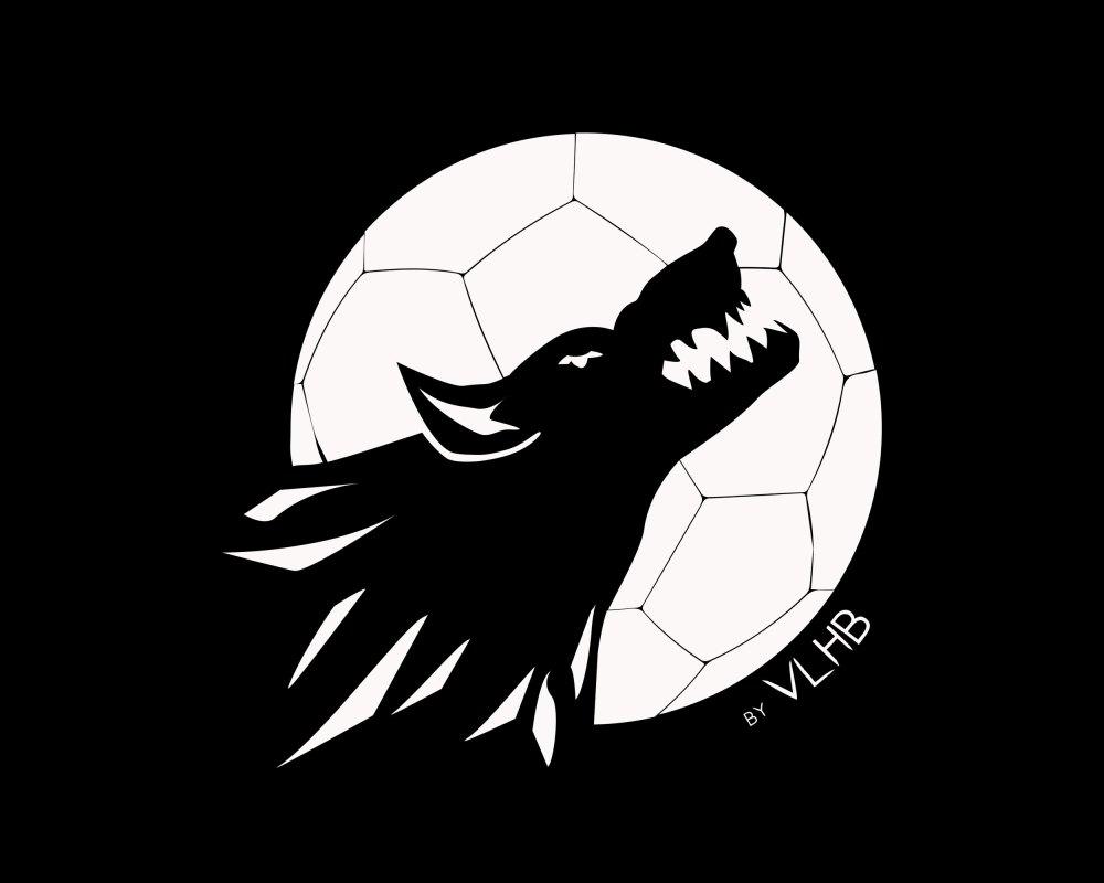 VLHB - Villeneuve-Loubet Handball Club