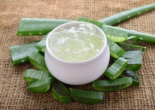 Déodorant naturel à l'aloe vera et à l'huile essentielle d'arbre à thé