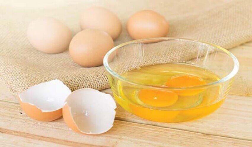 """Egg Yolk """"width ="""" 850 """"height ="""" 496 """" data-recalc-dims="""