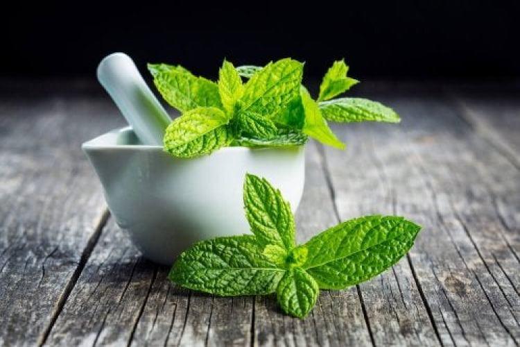 thé à la menthe pour traiter les maux de dents