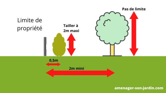 distance plantation clôture